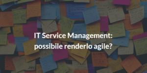 it service management agile